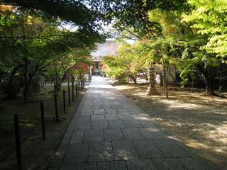 Kyoto071103_08