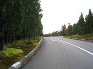 Bike071104_30
