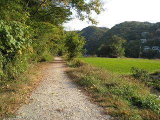 Hike071117_22