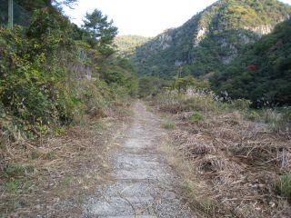 Hike071117_50