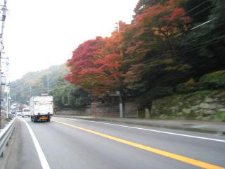 Kyoto071127_02