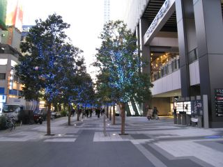 Tokyo071205_12