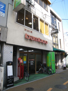 Bamboo080104_01
