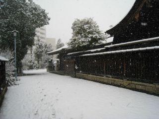 Kyoto080209_10