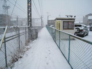 Kyoto080209_15