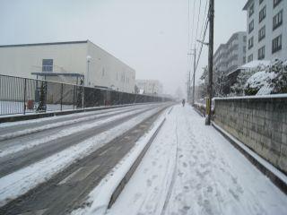 Kyoto080209_22