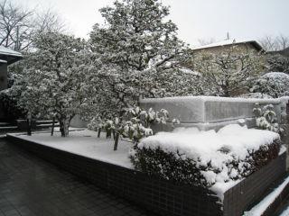 Snow080224_04