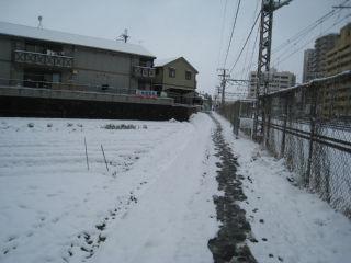 Snow080224_06