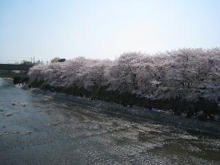 Kyoto080406_01
