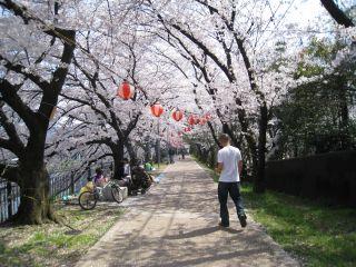Kyoto080406_02