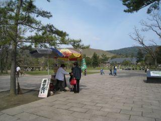 Nara080412_29