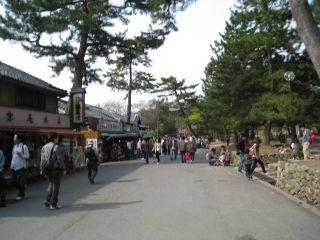 Nara080412_33