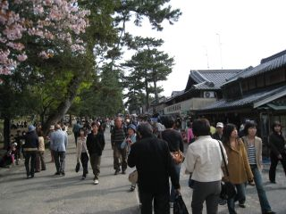 Nara080412_48