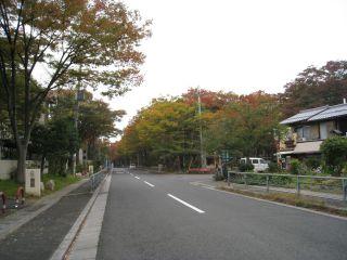 Kyoto081103_27