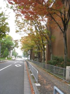 Kyoto081103_28