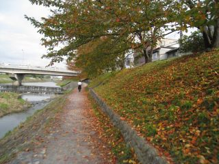 Kyoto081115_04
