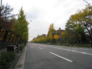 Kyoto081115_16