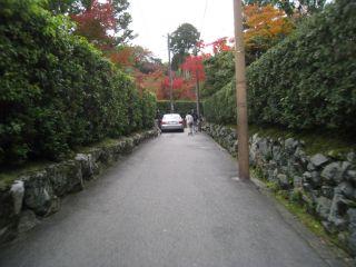 Kyoto081115_26