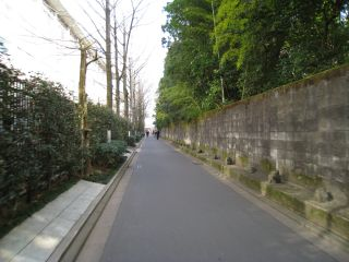 Kyoto081220_12
