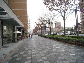 Kyoto081223_07
