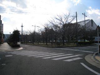 Kyoto081223_15