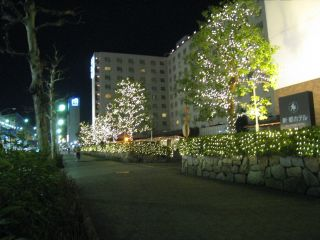 Kyoto090129_05