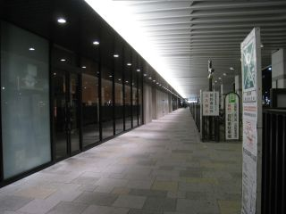 Kyoto090129_06