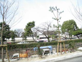 Kyoto090308_11