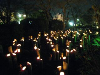 Kyoto090318_12