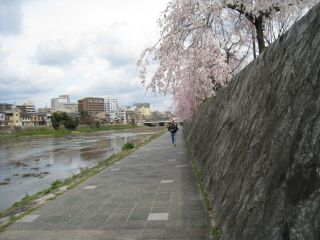 Kyoto090328_02