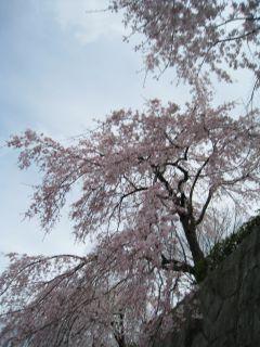 Kyoto090328_04