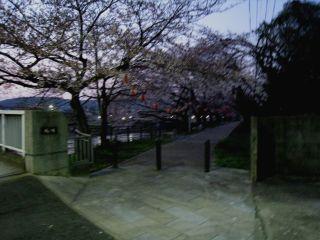 Kyoto090401_03