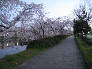 Kyoto090403_02