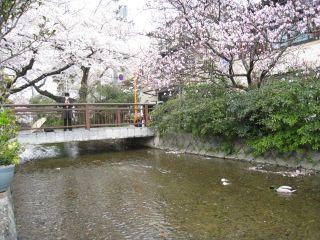 Kyoto090404_05