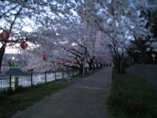 Kyoto090406_01