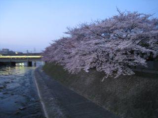 Kyoto090406_02