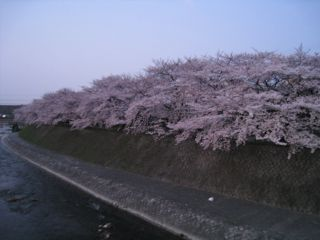 Kyoto090407_01