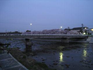 Kyoto090408_05