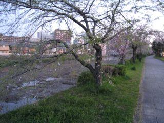 Kyoto090409_02