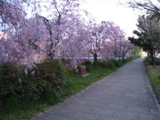 Kyoto090409_03