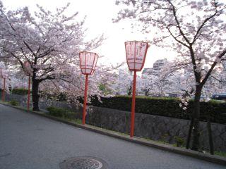 Kyoto090408_14