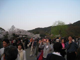 Kyoto090408_28