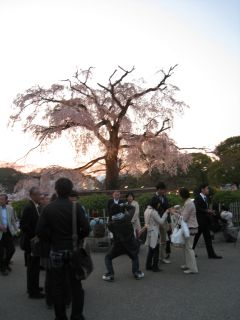 Kyoto090408_29