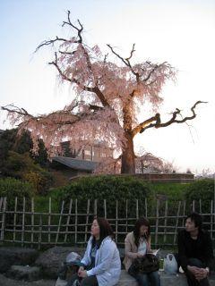 Kyoto090408_32