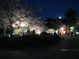 Kyoto090408_34