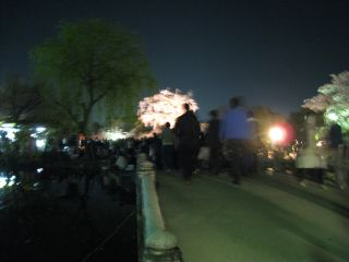 Kyoto090408_37