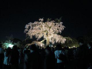 Kyoto090408_38