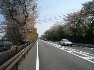 Kyoto090412_17