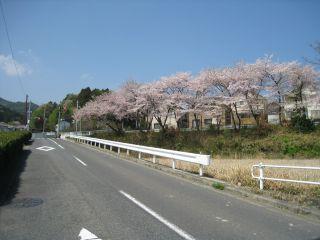 Kyoto090412_22
