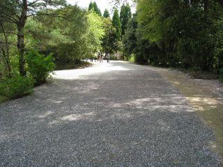 Ishiyama090411_09